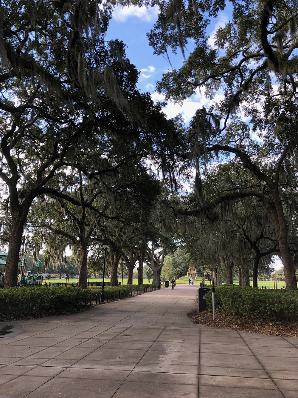 Strolling through Forsyth Park