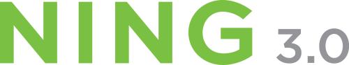 logo_color_ning3.jpg