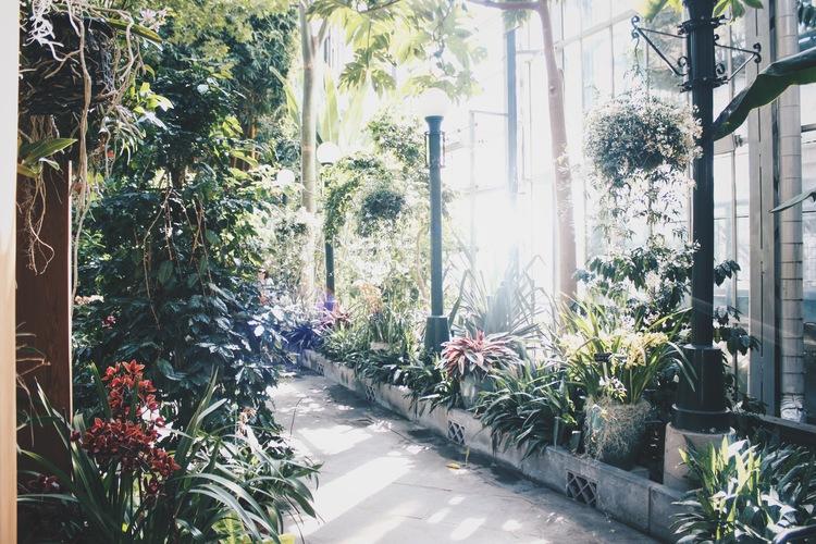 pictured: U.S. Botanical Garden