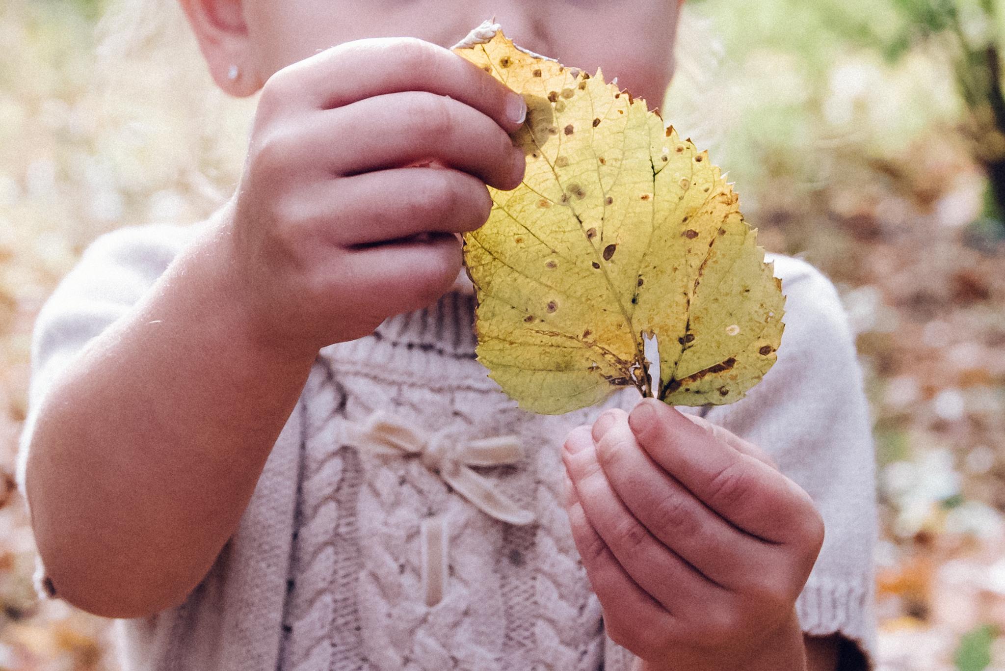 Childrens_Family_Photographer_Fargo_Moorhead-5518.jpg