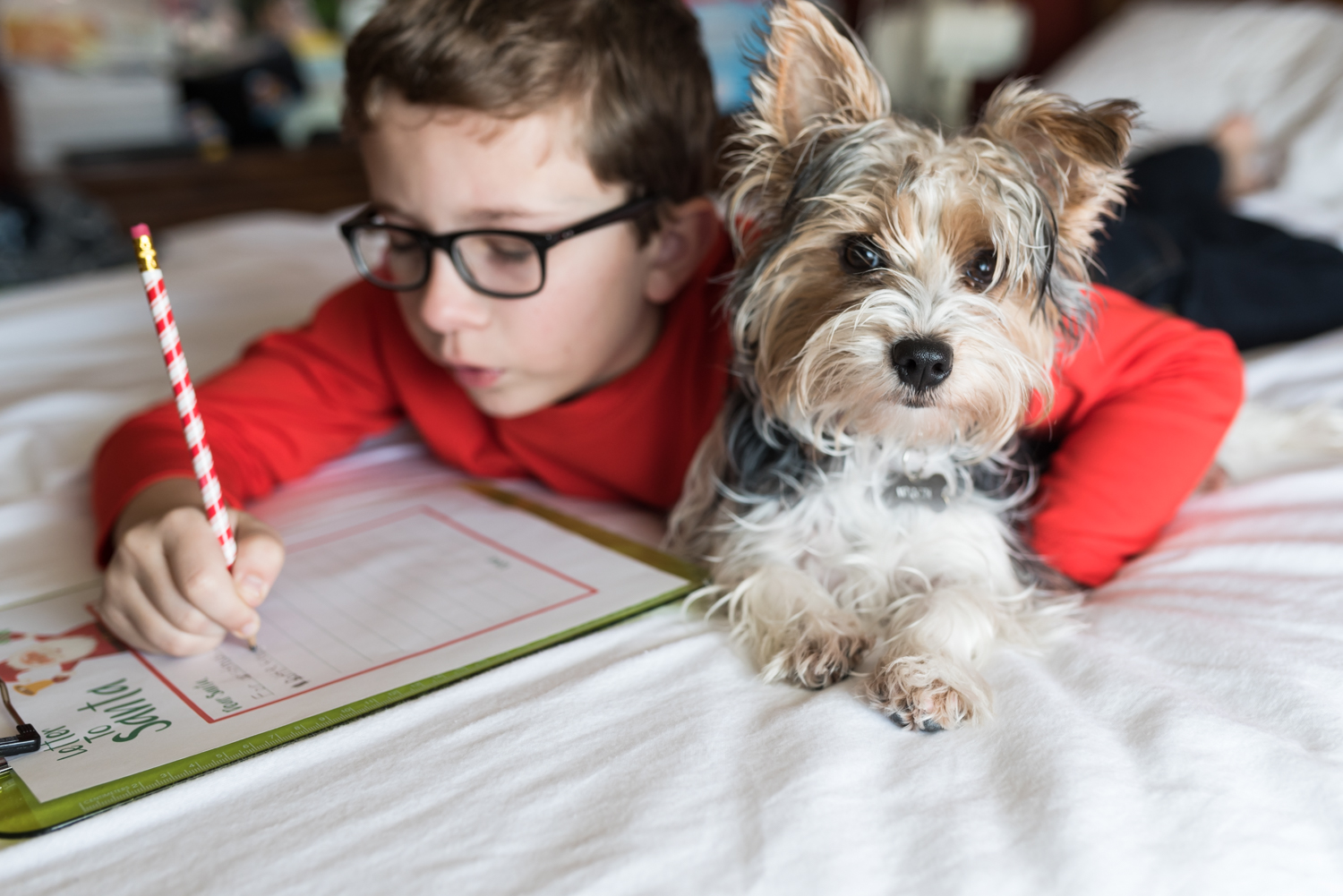 Boy and Puppy writng their Santa List on Bed