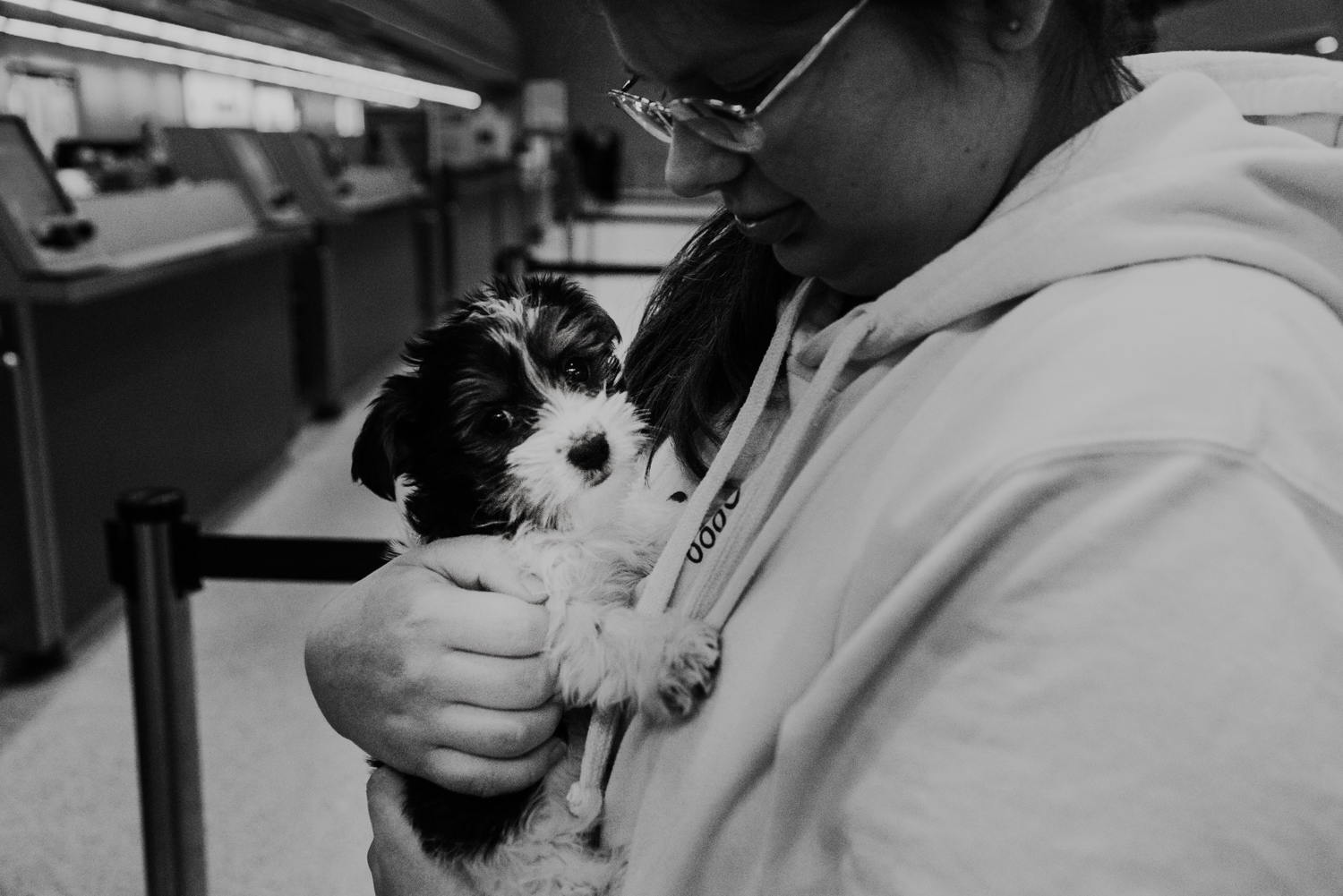 Teen girl picking up her yorkie puppy at the airport.