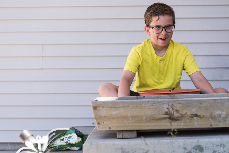 Boy planting sunflower seeds.