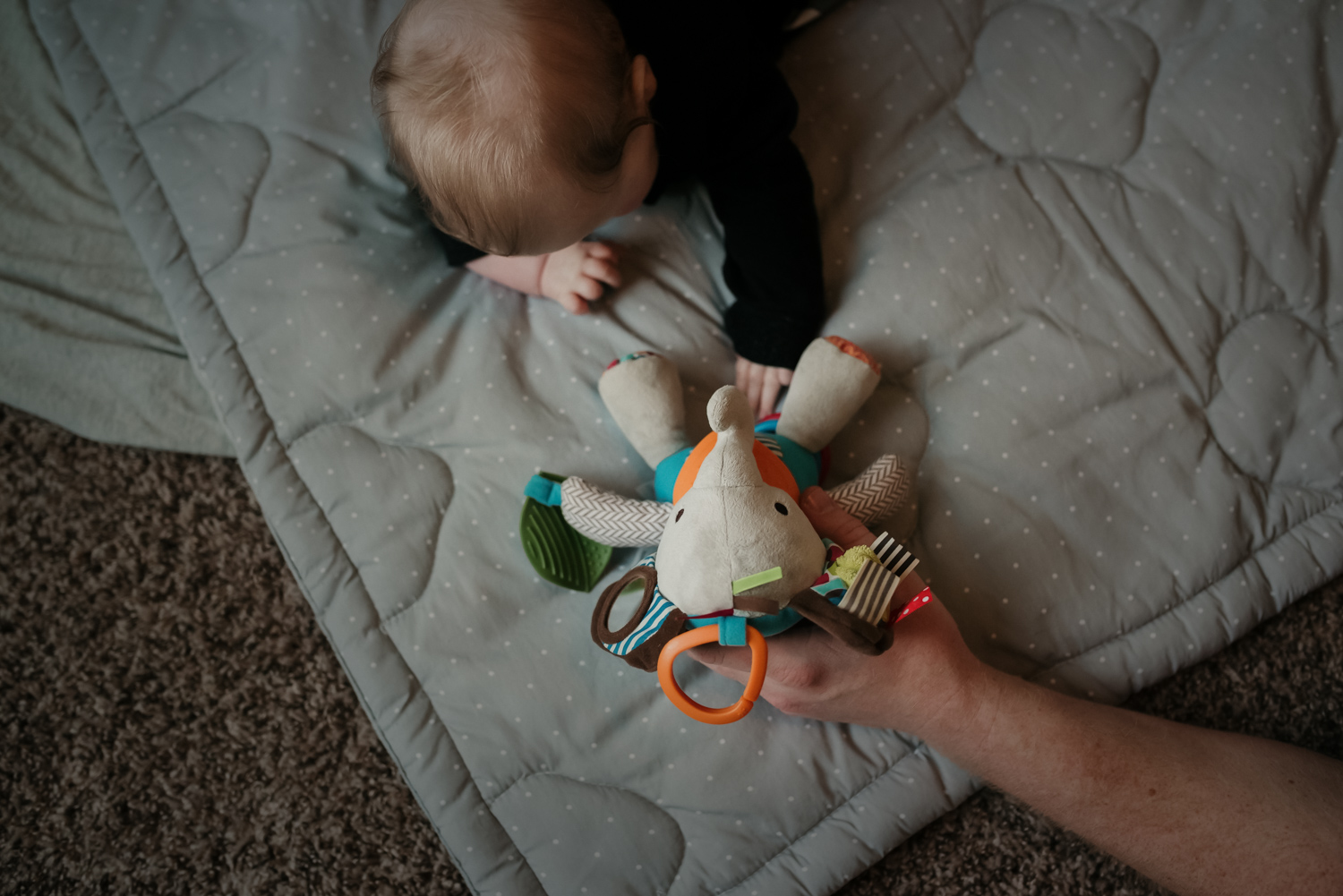 Baby laying on her tummy reaching for a favorite toy.