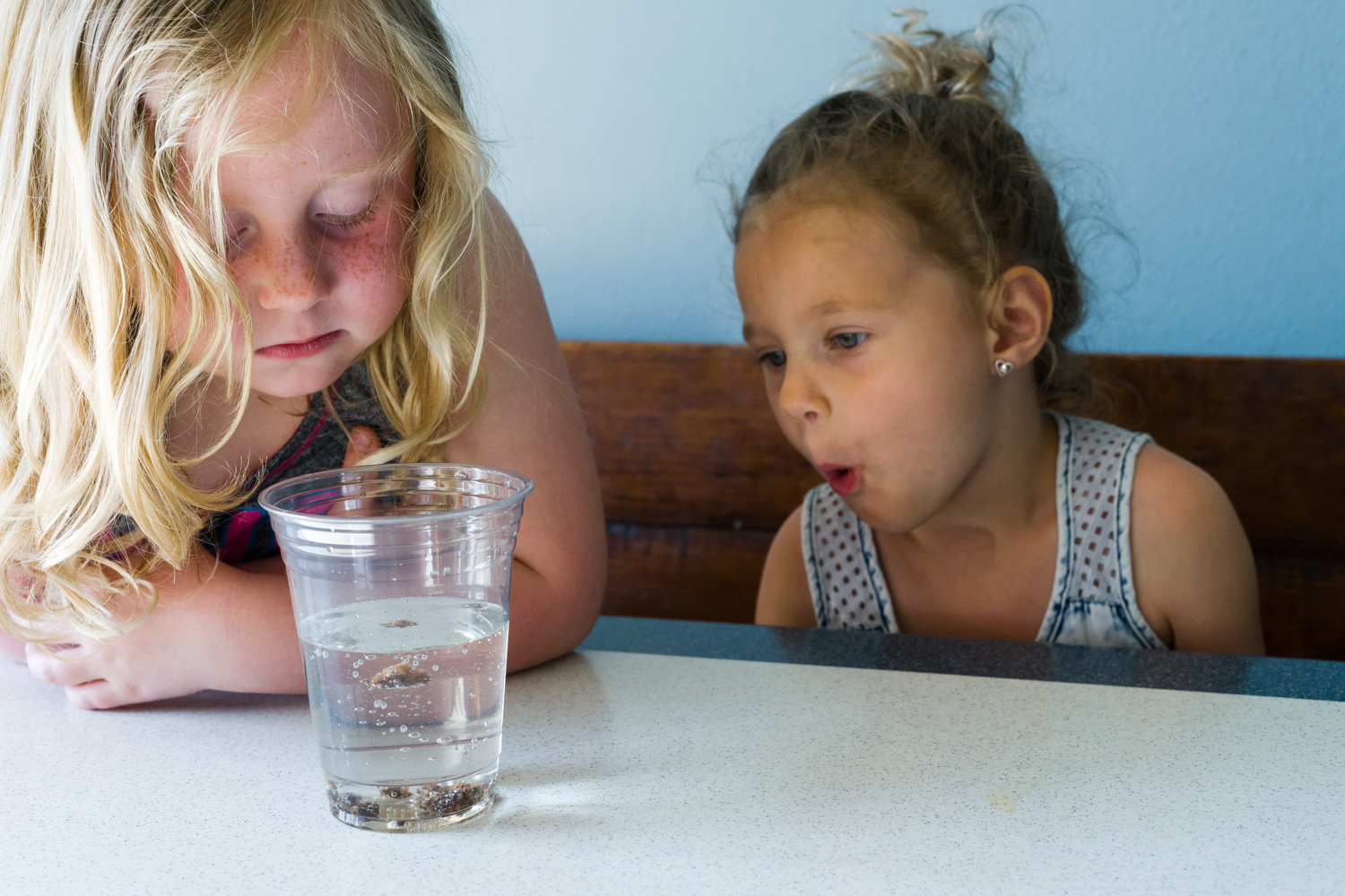 Friends at daycare observing a science activity at daycare in West Fargo, ND.