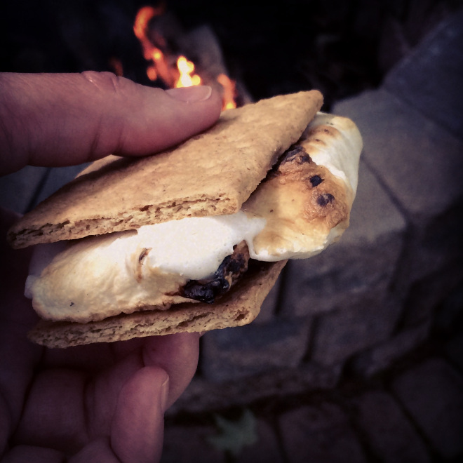 S'mores... the best part of a day at the lake!