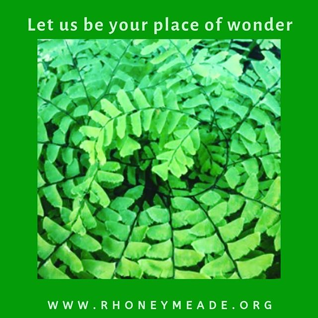 We love to share our grounds with our community.  Bird walks, permaculture presentations, art exhibits, farm tours, art classes, summer camps - many of you have joined us at one or more of these in the past.  Please support our mission by contributing through #CentreGives before 8pm tonight.  Follow the direct link in our bio. #rhoneymeade #statecollege #centrehall #arboretum #statecollegeweddings