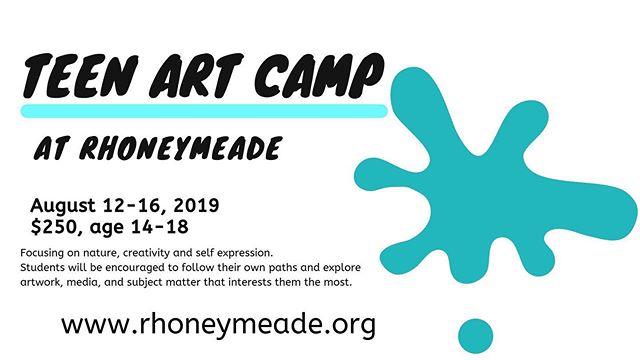 We still have openings - sign up now via our website- see Bio #rhoneymeade #artcamp