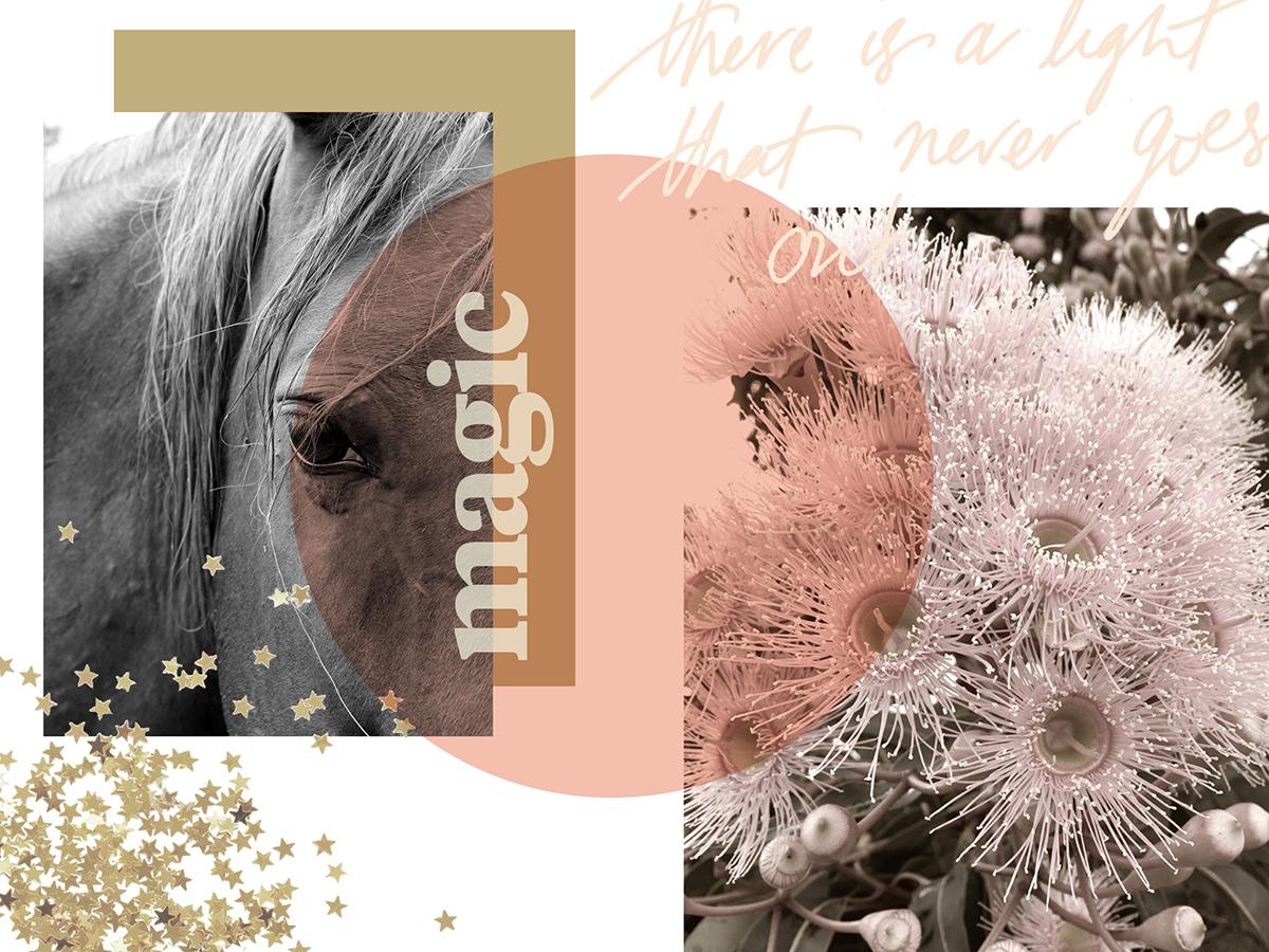 magic-web.jpg
