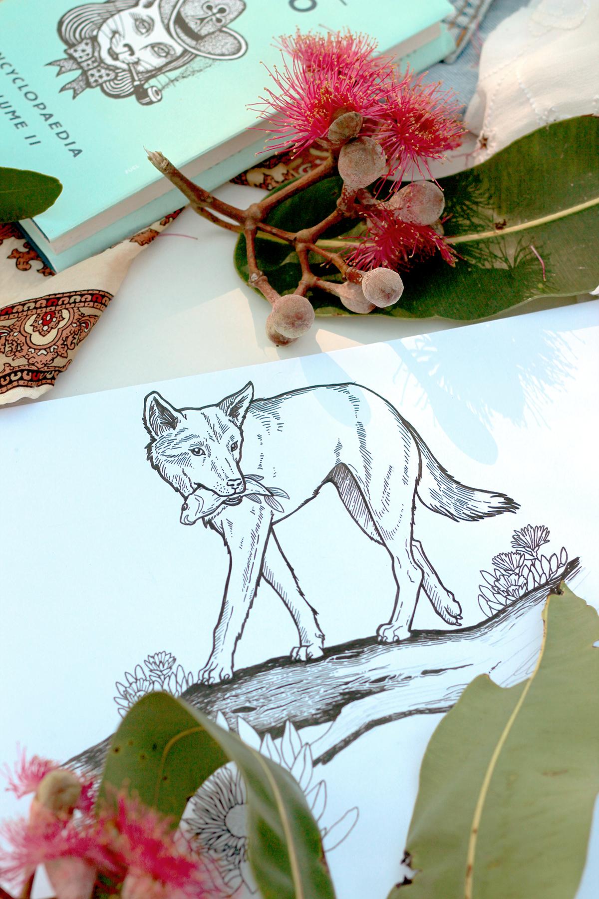 ponygold-sketchbook11.jpg