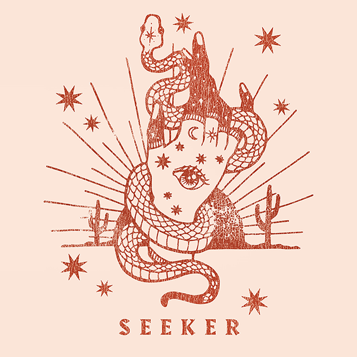 Seeker-web.jpg
