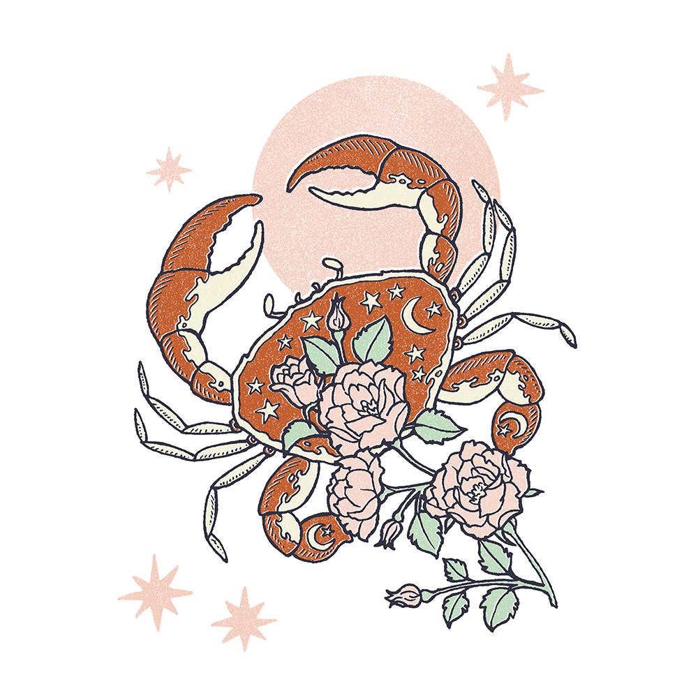 Rose-crab-web.jpg