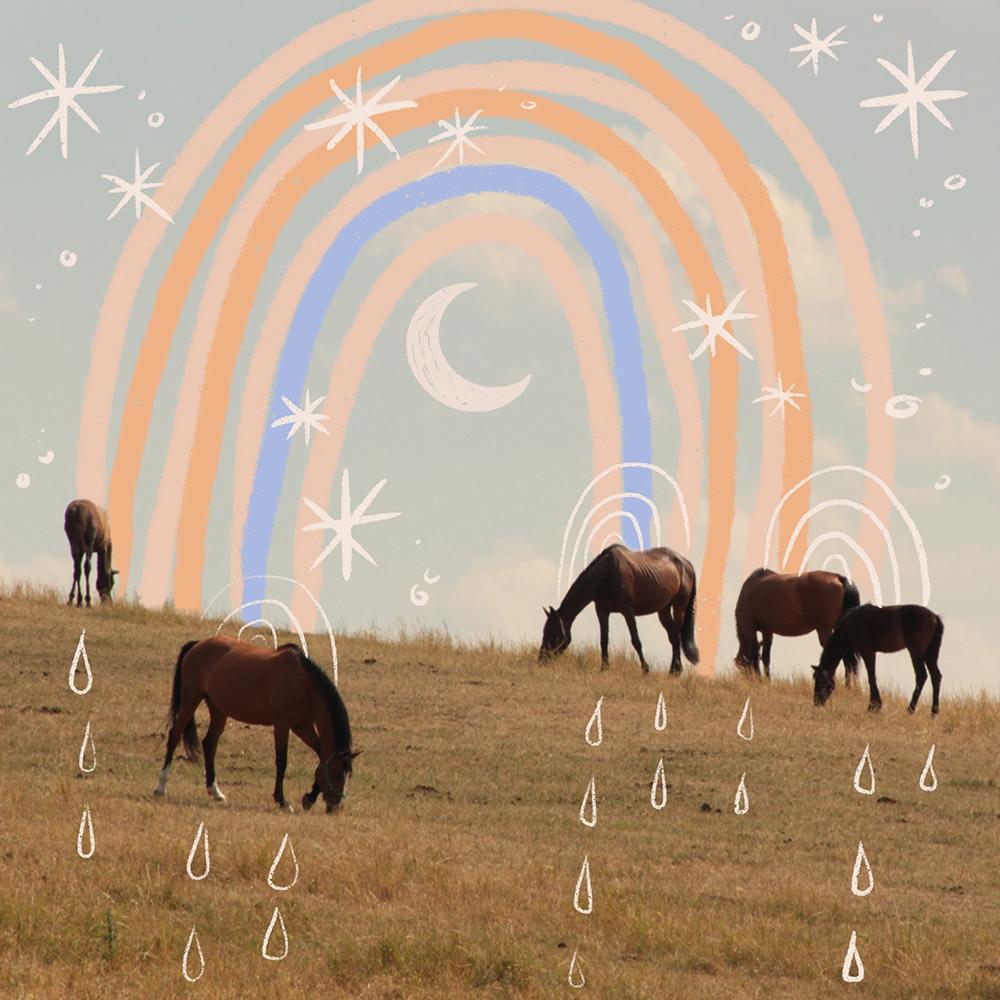 ponygold-rainbows-2.jpg