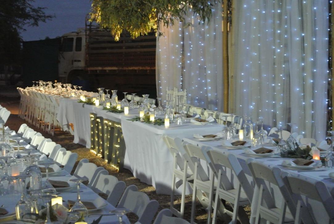 Tulle & Fairy Light Backdrop, Reception Dining