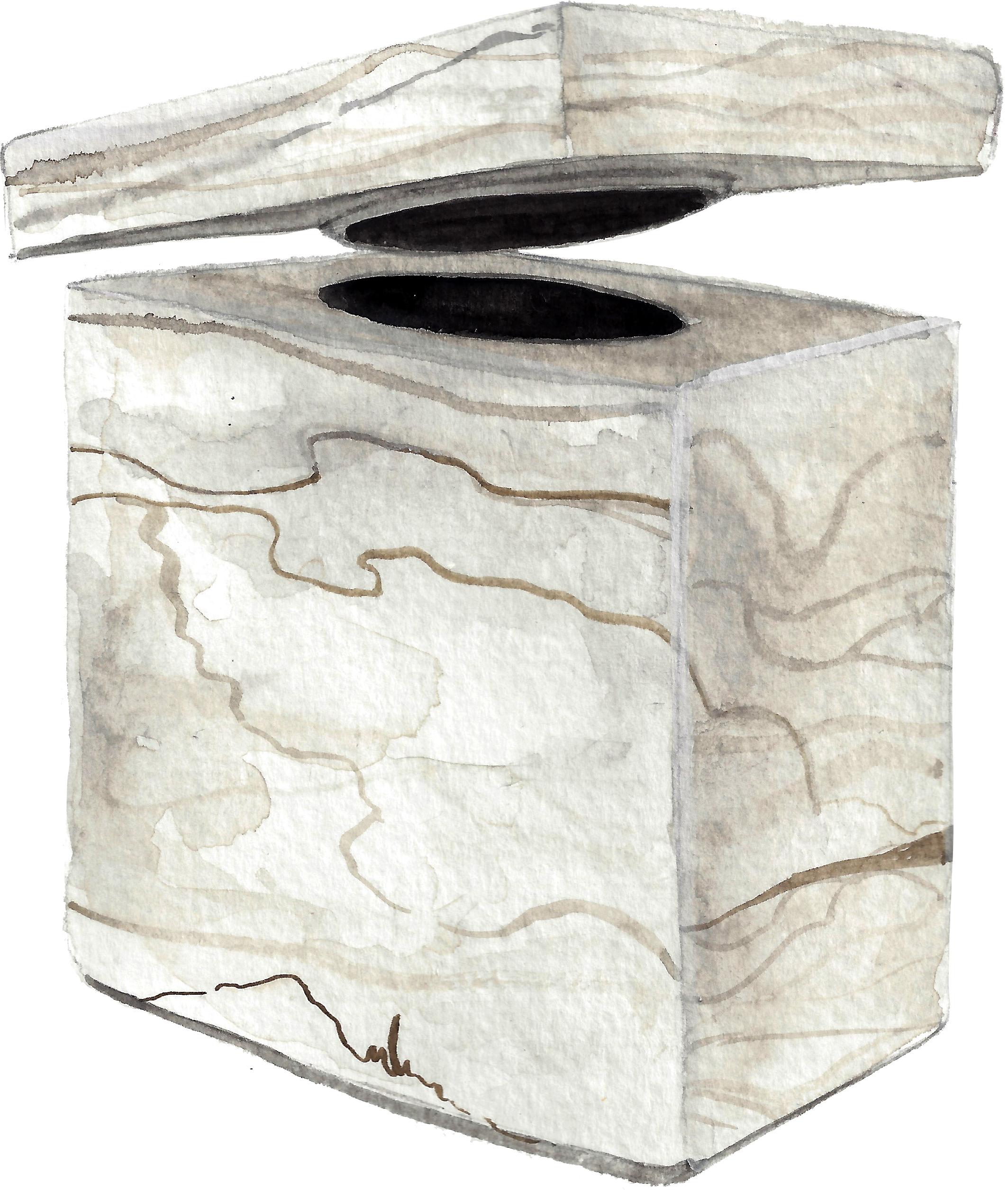 5. T Box.jpg