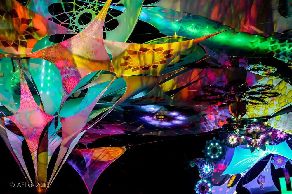 0679 decor liquid faeries Noisily 2015.JPG