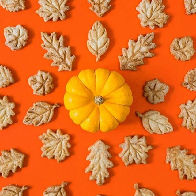 A little late to celebrating the first day of fall, and while I may be a summer girl - I can't wait for the colder weather and rain to come back! I'm also in desperate need of pie from @ilikepiebakeshop who made these beautiful pie crust leaves🥰🥧