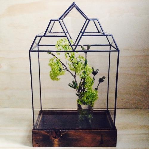 The Mendel Terrarium by LeadHead Glass