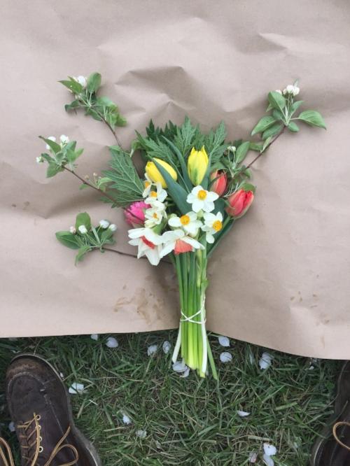 Photo from Fresh Cut Flower Farm