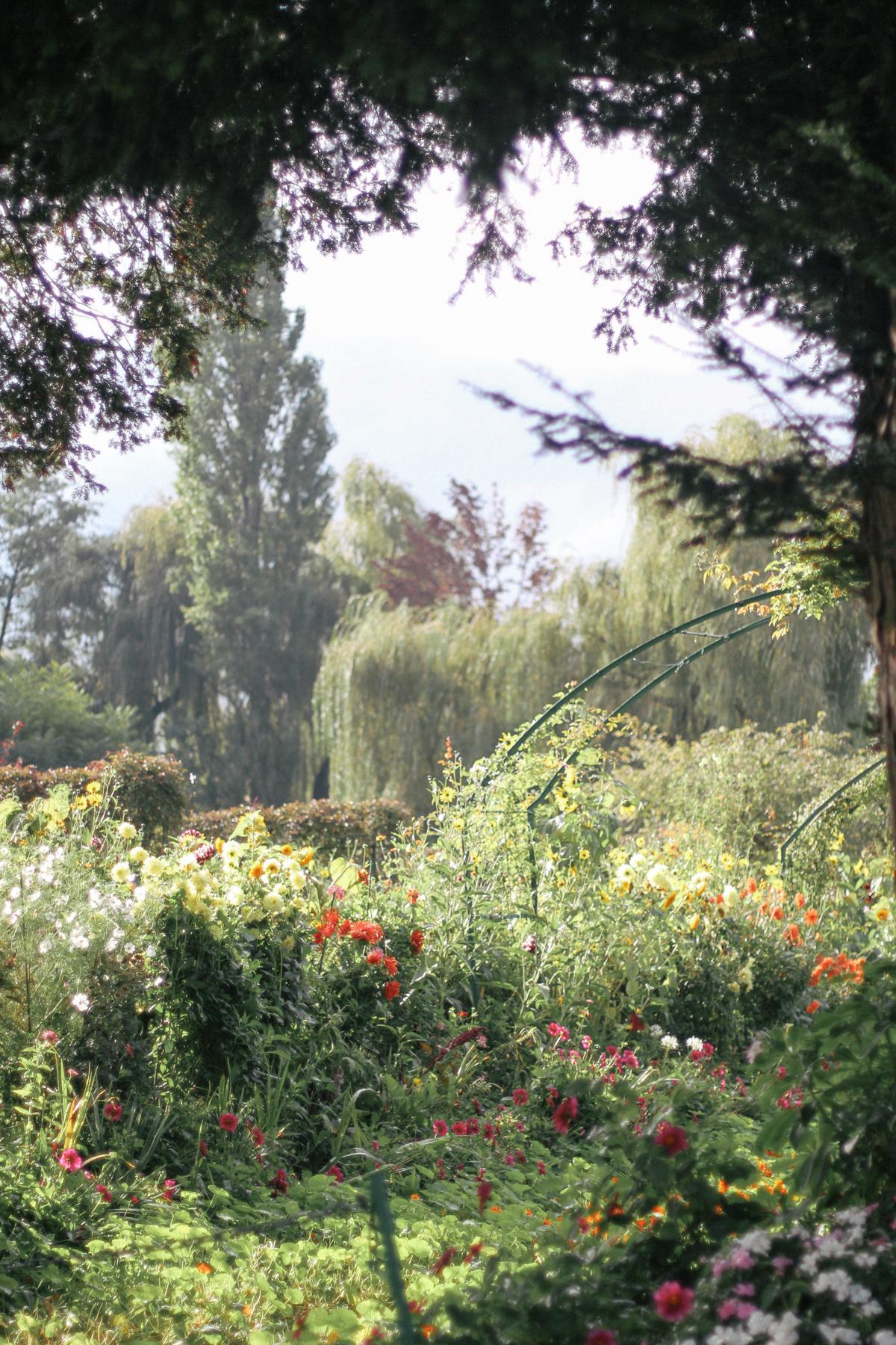 Giverny-17.jpg