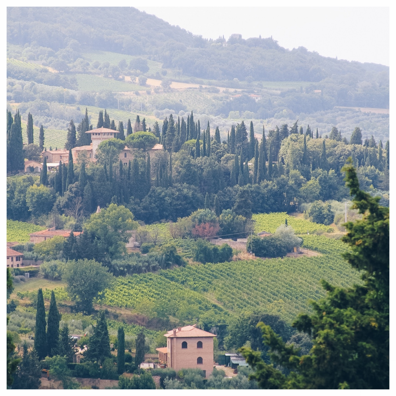 Exploring Tuscany | Monica Francis Design