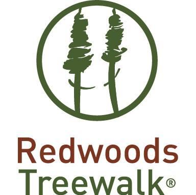 Redwoods Treewalk.jpg