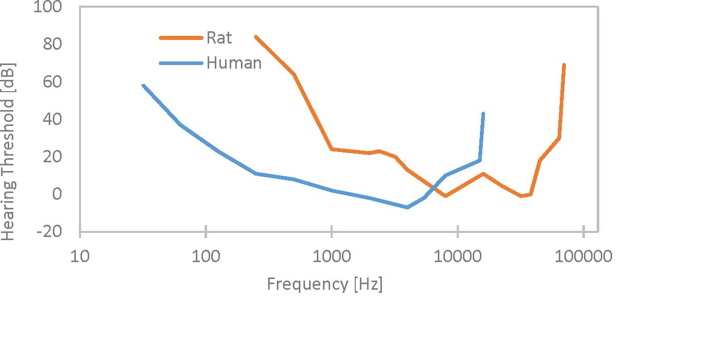 human-v-rat-audiogram-1