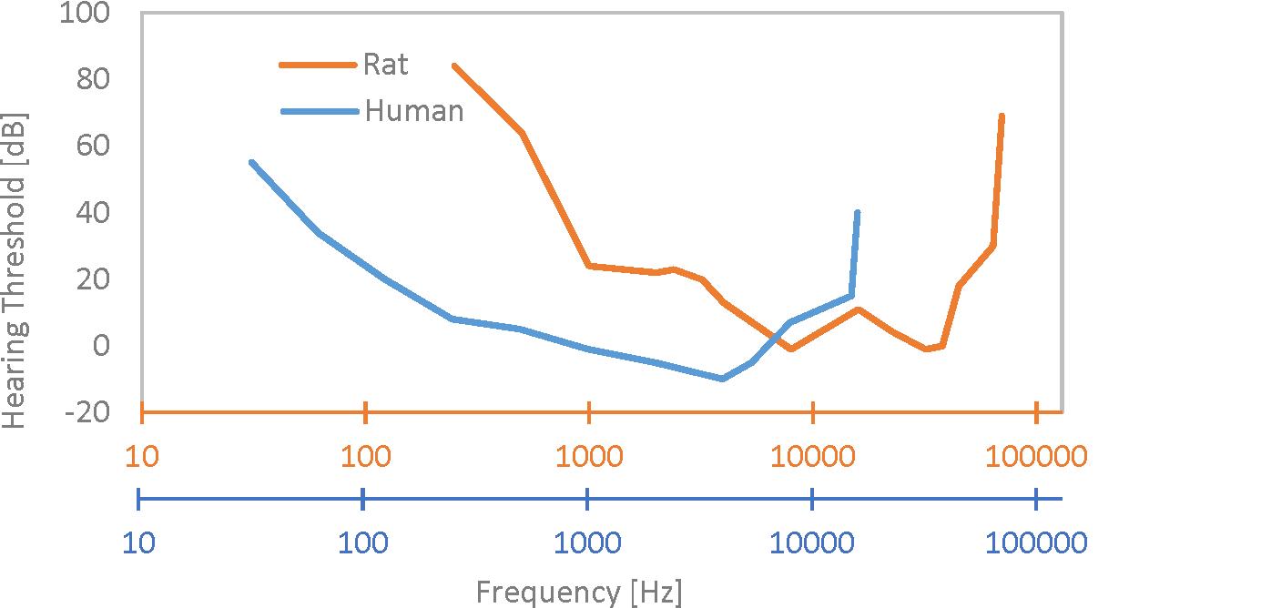 human-v-rat-audiogram-2
