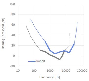 Rabbit Hearing Threshold