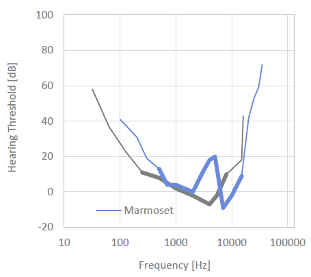 Mamoset Hearing Threshhold