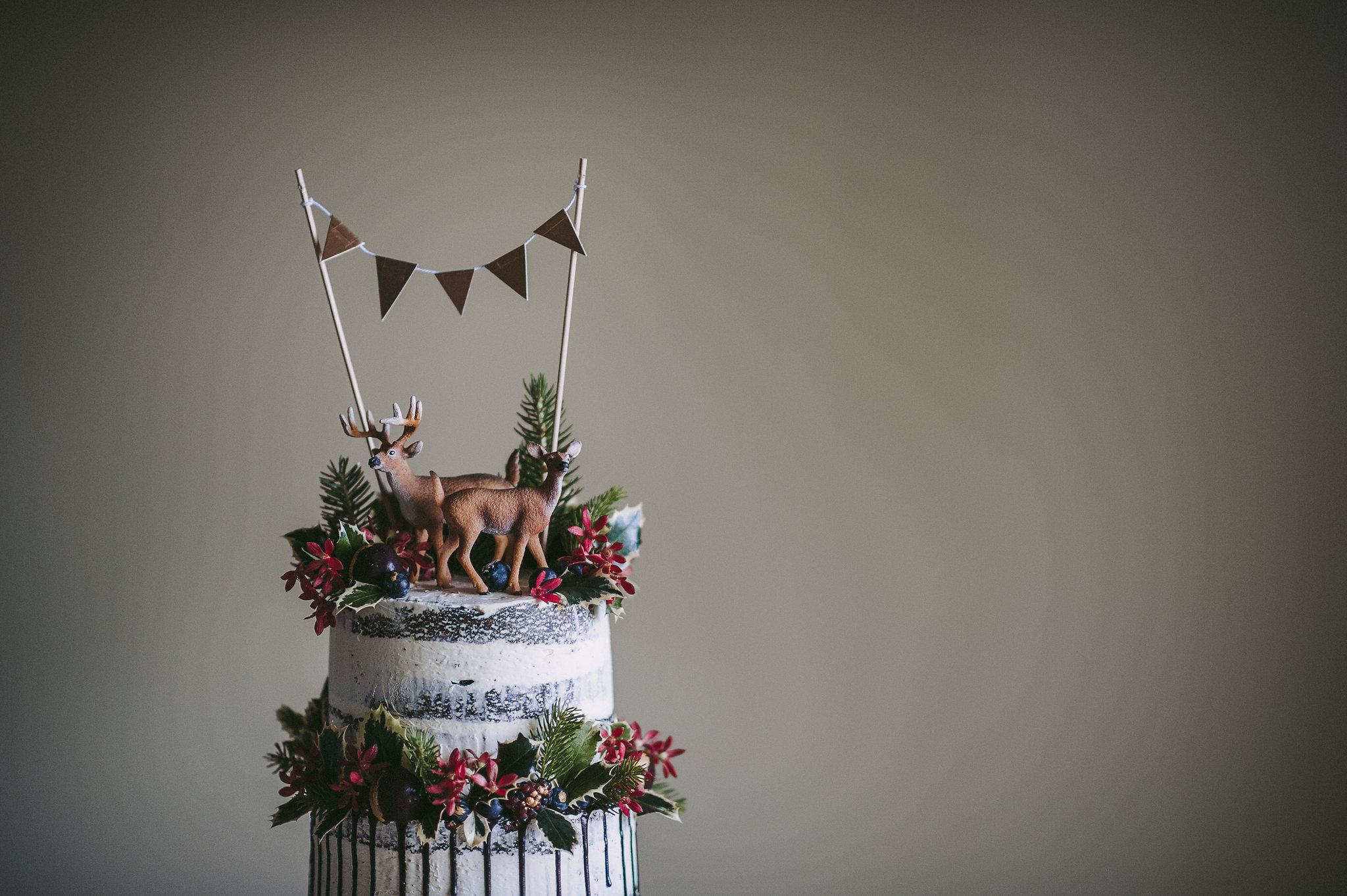 cherry-cakes-xmas-003.jpg