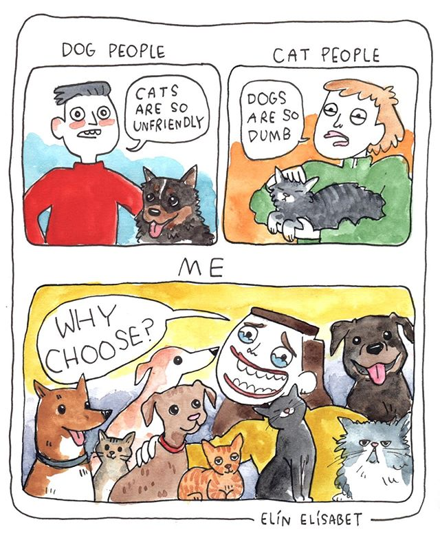 Cats are amazing dogs are amazing what is the problem?? My latest for @rvkgrapevine #elinelisabet #cartoon #comics #cartoonist #illustration #illustrator #cartoonistsofinstagram