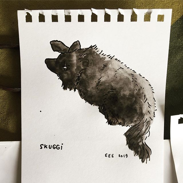 Skuggi the dog, who lives on an island in the middle of Þjórsá river in south Iceland  #elinelisabet #drawing #watercolour #traustholtsholmi #dog @hakonjarl @traustholtsholmi