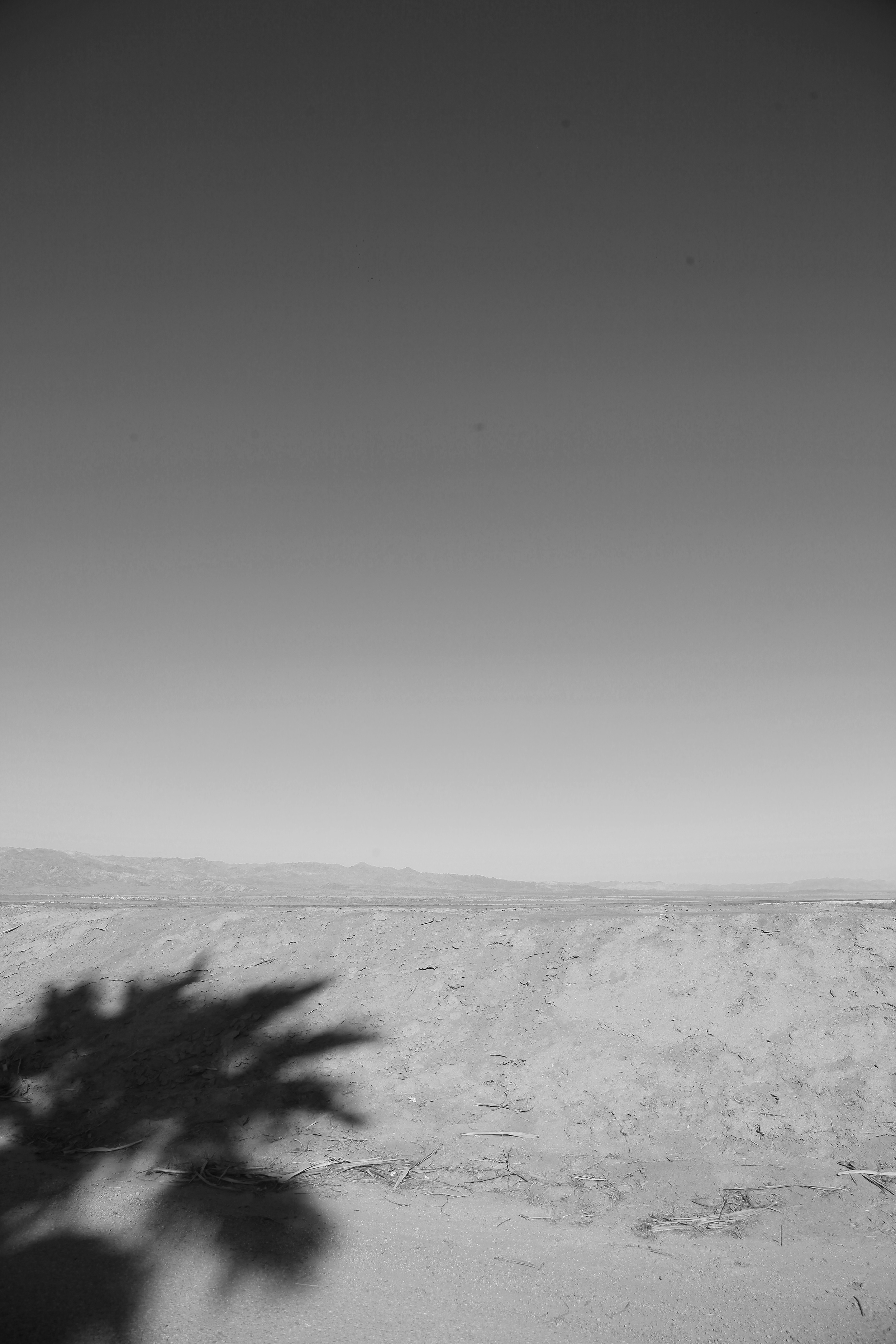 Salton_Sea_26.jpg