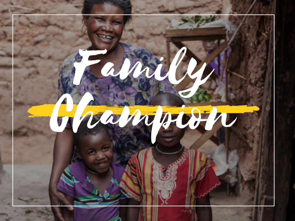 Support children to live in families - Become A Family Champion