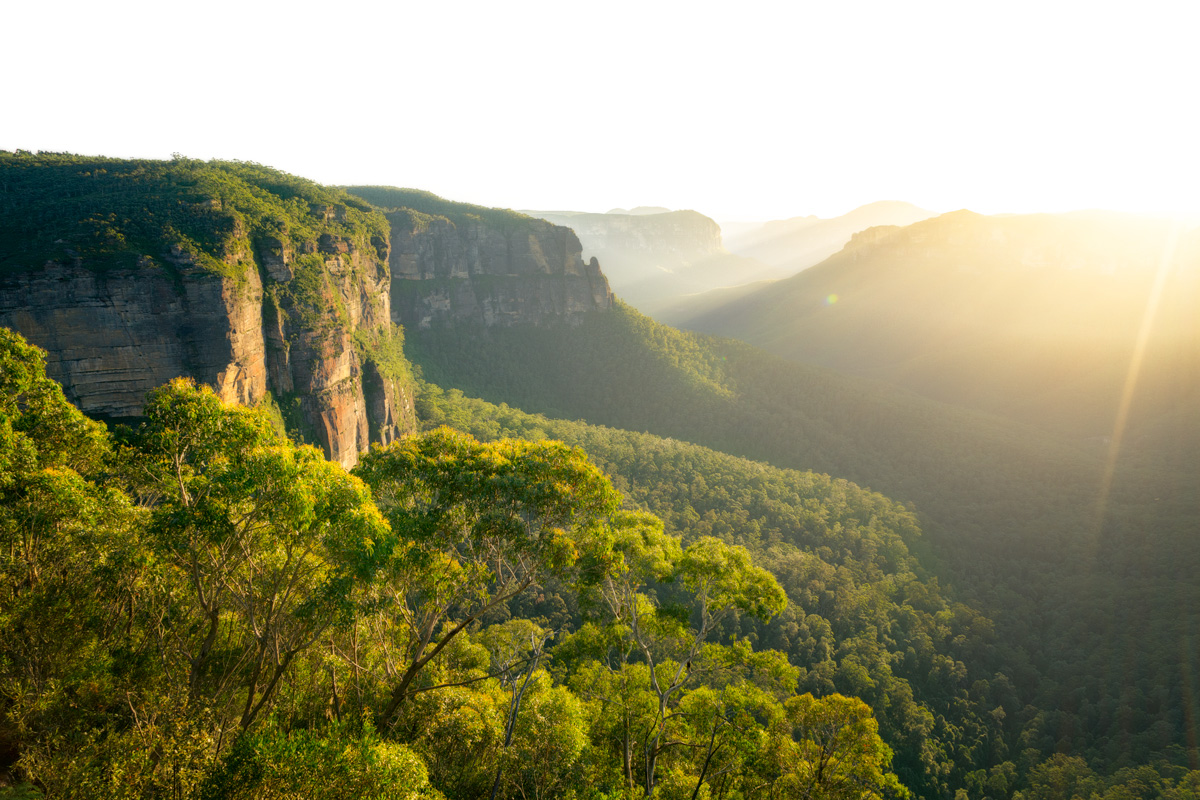 The morning's golden sun rays, shining down through to the valley floor of the  Blue Mountains , from Govetts Leap lookout.