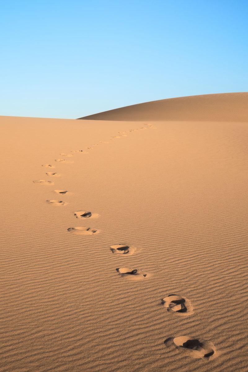 Stockton-Sand-Dunes-Newcastle-Sunset.jpg
