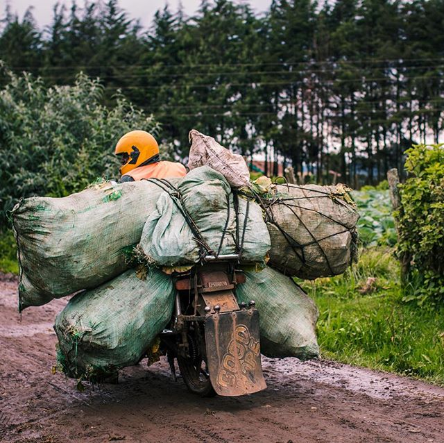 #TuesdayThoughts: Many dairy trader entrepreneurs in the informal market use a boda (motorbike) as their main method of transportation. This causes a problem during the long rainy season when unpaved county roads turn to mud, increasing the risk for the trader. With LishaBora's mobile application, dairy traders have the opportunity to build credit history and apply for loans which can be used to finance assets such as a car. . . . #kenya #agriculture #farmer #dairyfarming #cows #milk #smallholder #postthepeople #peopleplanetprofit #discoverportrait #photographysouls #humanity_shots_ #great_captures_people #people_infinity #ventures #socialentrepreneurship #sustainability #socent #entrepreneurship #development #sustainabledevelopment #impact #artofvisuals #ourplanetdaily #bevisuallyinspired #collectivelycreate #exlusive_shot #ig_africa #eastafrica