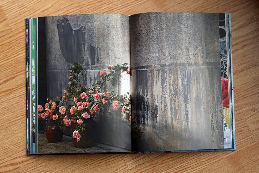 ForagedFloraBook1.jpg