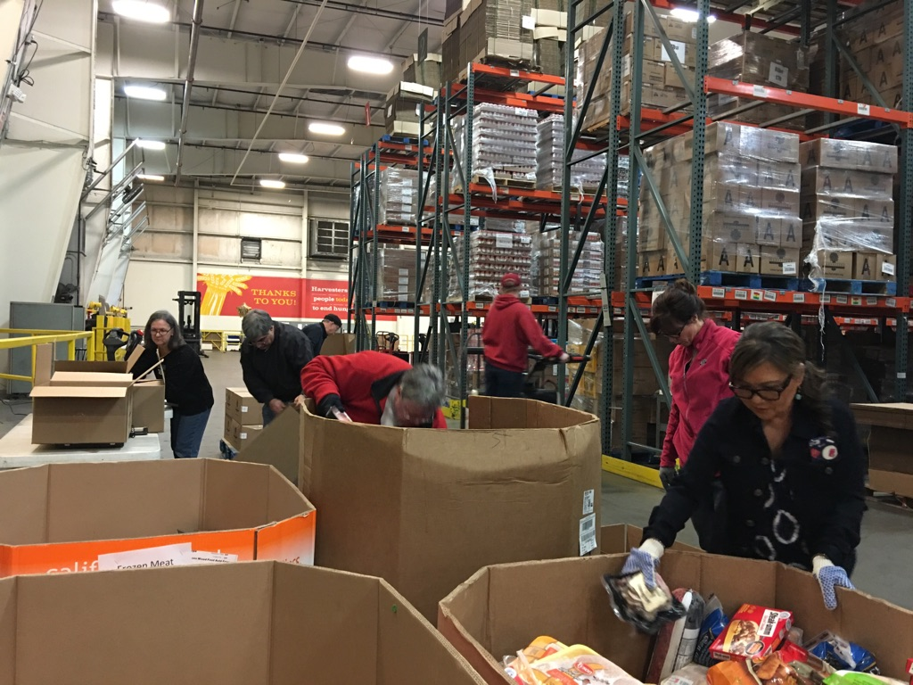 Community Service, Harvesters Warehouse