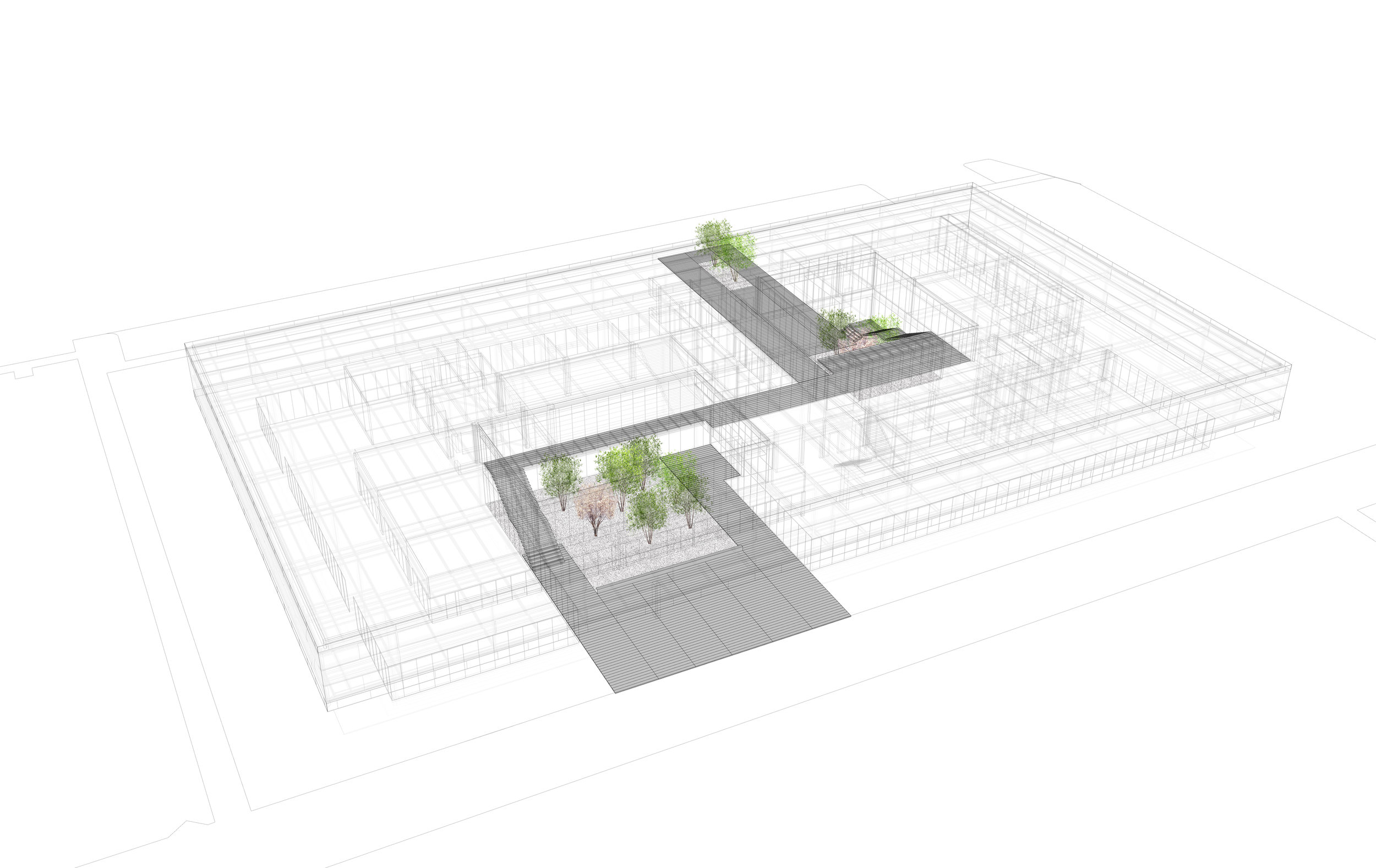 axon - trees 02.jpg