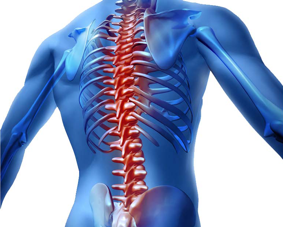 prevent back injuries by using Binder Lift