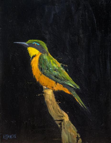 Bird On Black<br>acrylic on canvas<br>18 x 24 inches