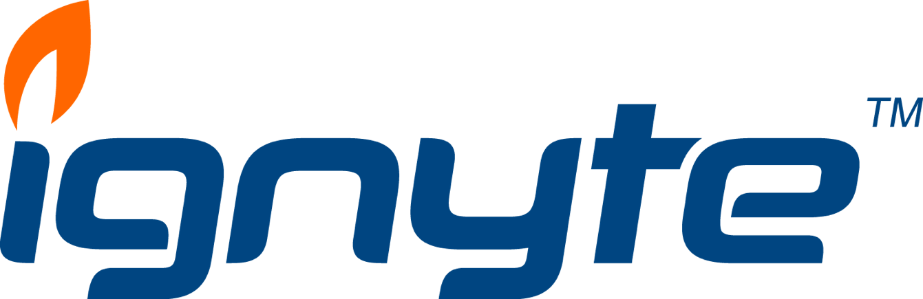 Ignyte Group - Washington DC's Digital Experience Consultancy