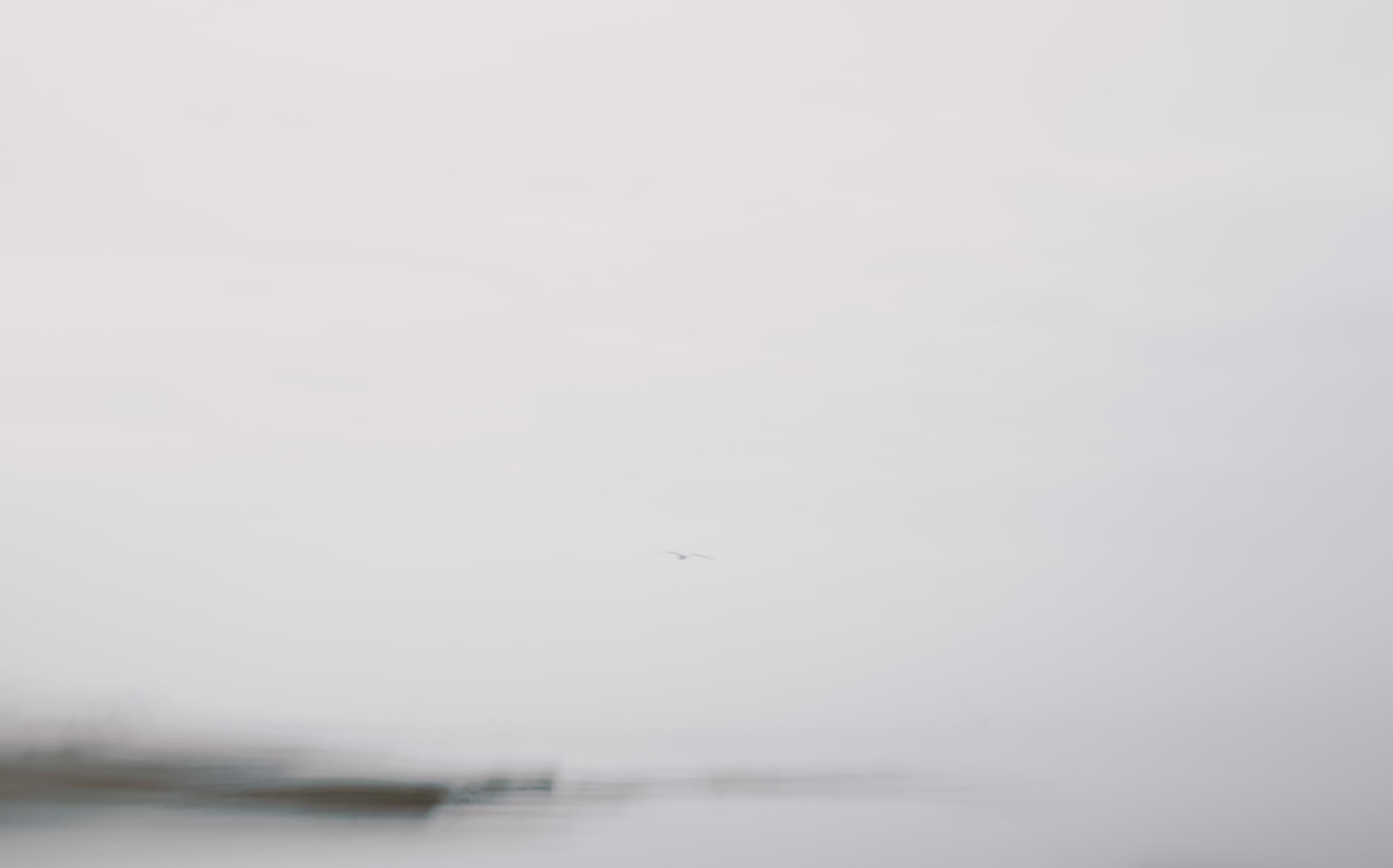 Jeremie Barlow Photography -7362.jpg