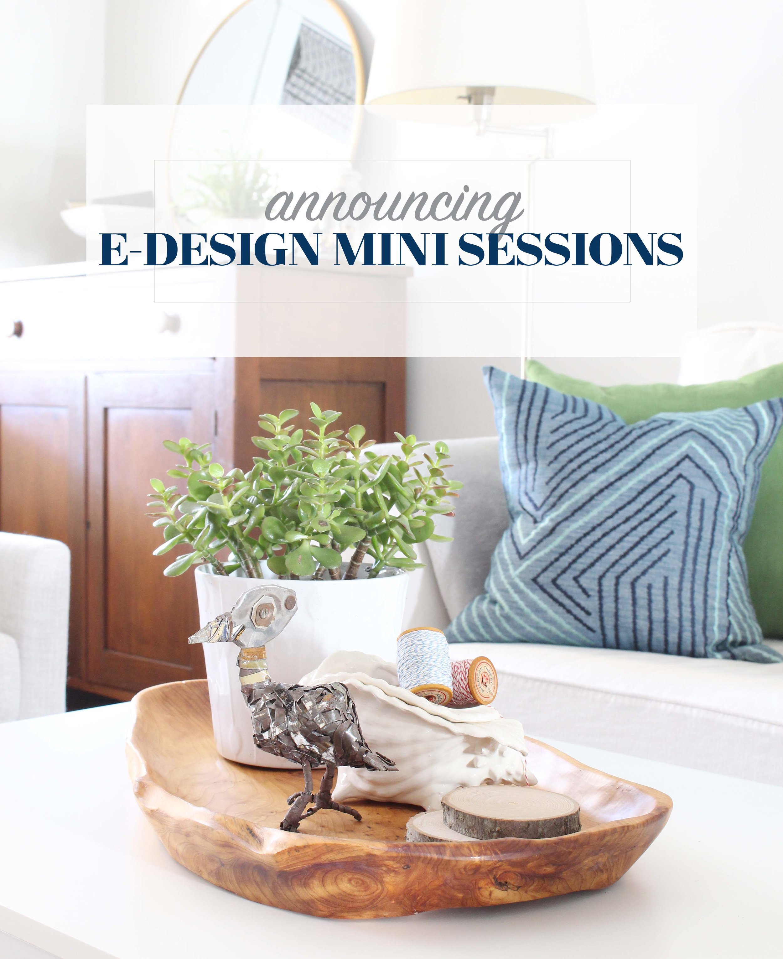 Sign up for an e-design mini session between May 1st and 15th for only $75! This is your chance to get ideas to solve your most pressing design dilemmas. Sign up now, and pick your one hour time slot for a video chat between May 1st and June 30th, 2017.