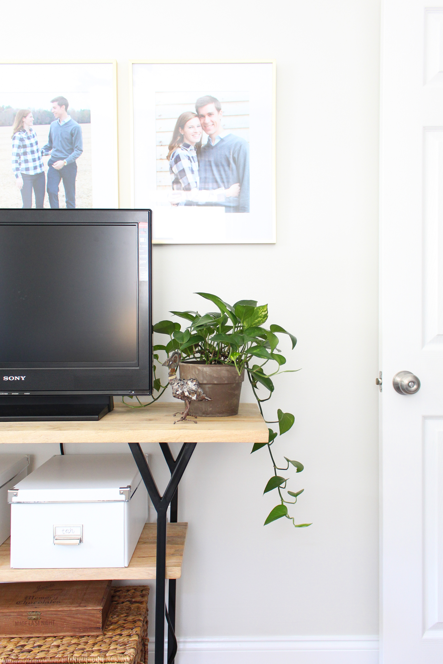 Plants bring so much life to a space!