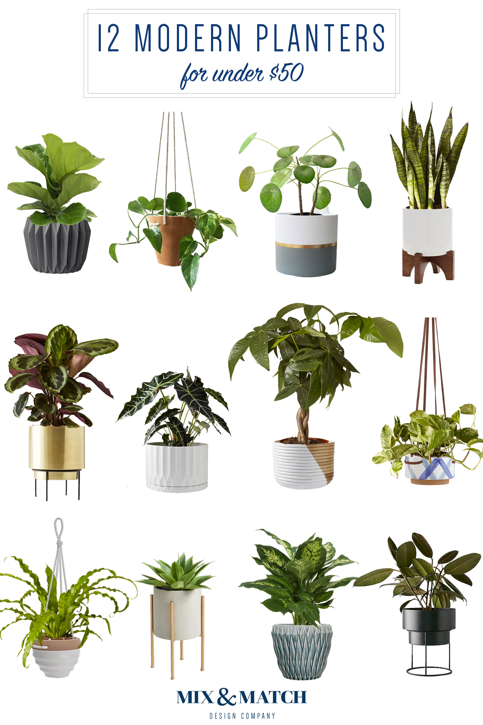 Are you shopping for a modern planter? I've got a roundup of twelve affordable planters on stands, hanging planters, and tabletop planters over on the blog along with tips on how to find the right one for your plant!