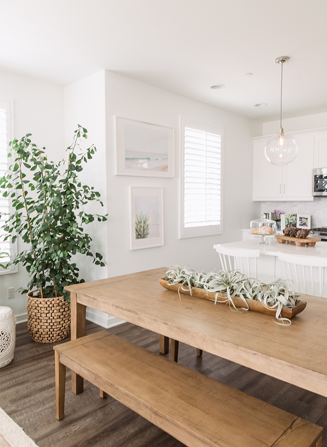 A modern coastal dining room with benches for seating. Love the air plants in the middle of the table too! For more ideas on how to use benches in your home, head to the blog post!