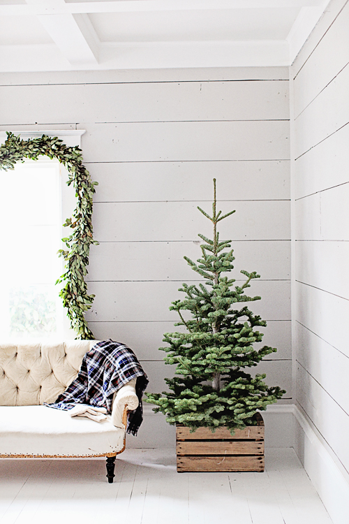 Keep your Christmas tree simple and minimalist by not decorating it at all! Using a wooden crate as a stand makes it feel intentional and special. | Scandinavian Christmas decorating
